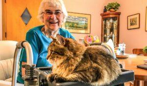 مراقبت از سالمند در منزل چه مزایایی دارد