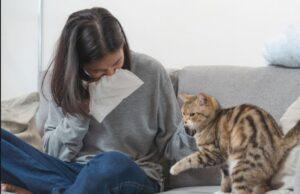 دلایل آلرژی به حیوانات