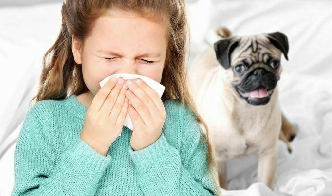 آلرژی کودکان به حیوانات