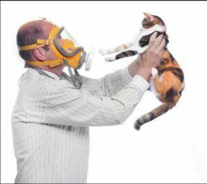 انواع آلرژی به حیوانات