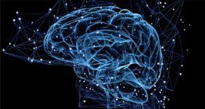 شناخت تاثیر سکته مغزی بر شخصیت