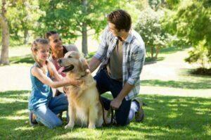خانواده و حیوانات خانگی