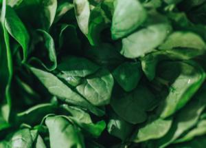 سبزیجات سبز و منیزیم