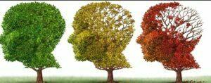 عوامل موثر پیر شدن مغز
