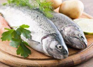 رژیم غذایی پر پروتیئن
