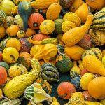 فواید سبزیجات زرد رنگ